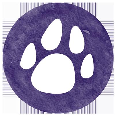 Dieren; hond, kat en paard Praktijk Dierbewust